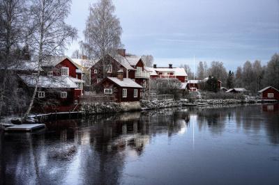 «Россети Ленэнерго» обеспечили мощность дачному кооперативу в Приозерском районе Ленинградской области