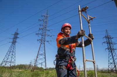 «Россети Ленэнерго» повысили надежность электроснабжения жителей Лужского района
