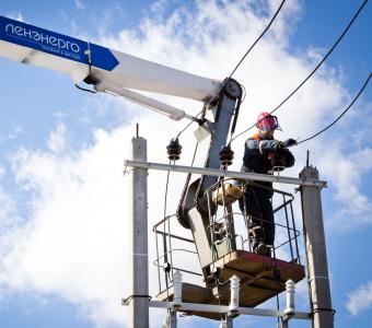 «Россети Ленэнерго» смонтировали более 250 км самонесущего изолированного провода в Ленинградской области