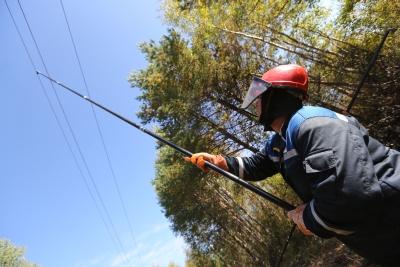 «Ленэнерго» развивает распредсеть во Всеволожском районе Ленобласти