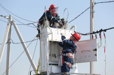 В 2020 году «Россети Ленэнерго» отремонтируют свыше 3600 км линий электропередачи