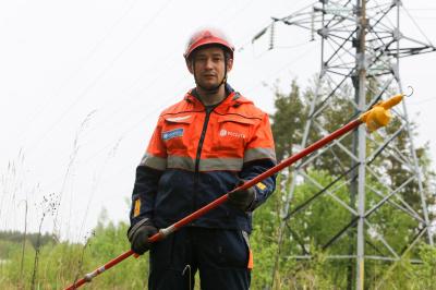 С начала года «Россети Ленэнерго» расчистили свыше 2000 га просек для обеспечения надежной работы линий электропередачи